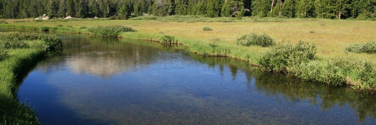 Bonne pratiques d'entretien et d'aménagement des cours d'eau